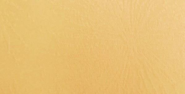 Mustard 40004